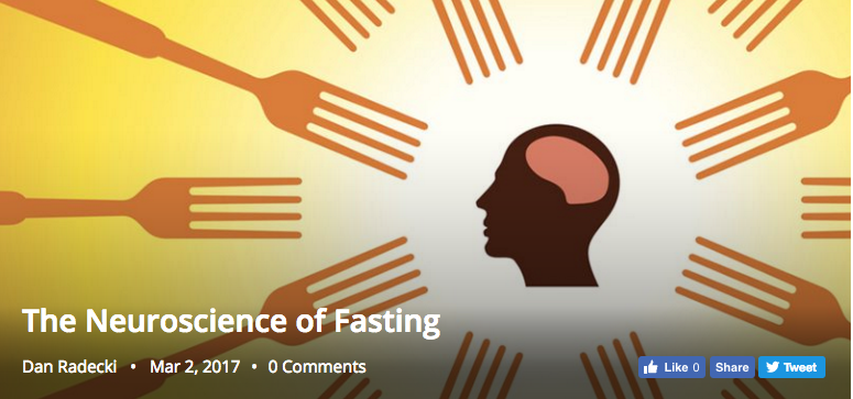 Neuroscience and the Fast